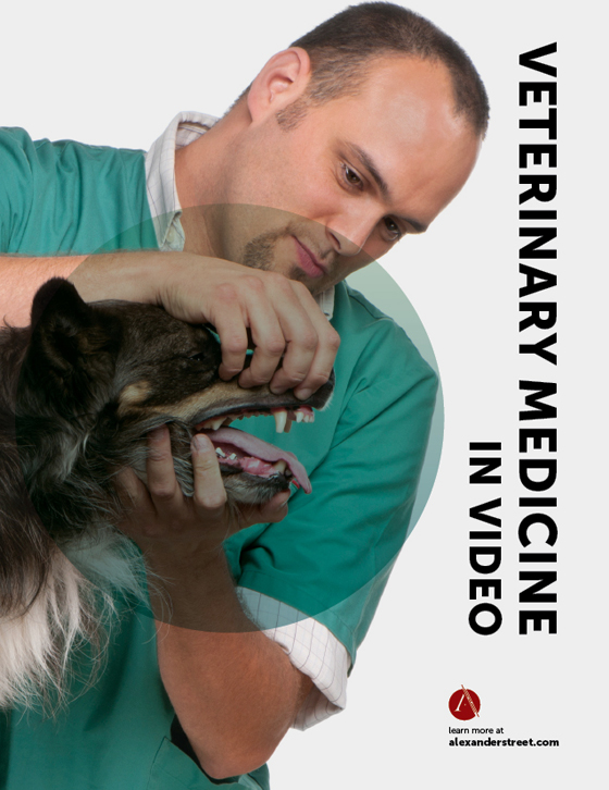 Veterinary Education in Video